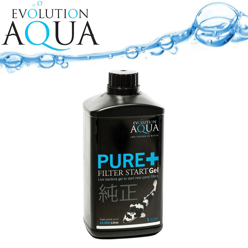 PURE + 1liter Filter Start Gel Evolution Aqua