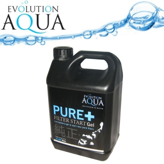 PURE + 2,5l Filter Start Gel Evolution Aqua